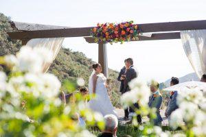 serendipitygardenwedding-47