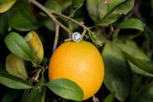 Jessica's engagement ring on an orange in Prospect Park.
